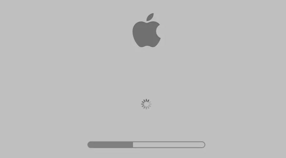 Mac Stuck on Apple Logo with Loading Bar on macOS Mojave